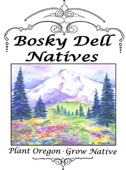 Bosky Dell Natives