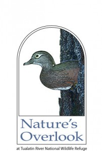 Nature's Overlook Store logo