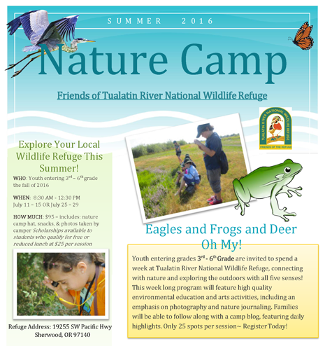 Link to Nature Camp page
